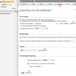 Importar una base de datos SQL de gran tamaño por PhpMyAdmin.